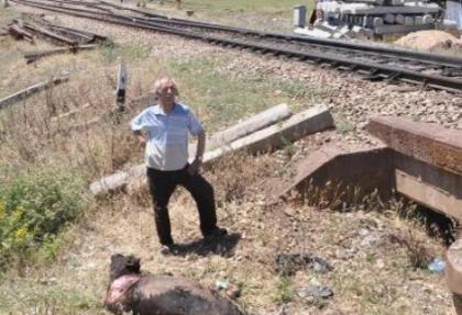 Yolcu treni sığır sürüsüne çarptı