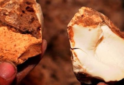 En kaliteli beyaz altın Türkiye'de