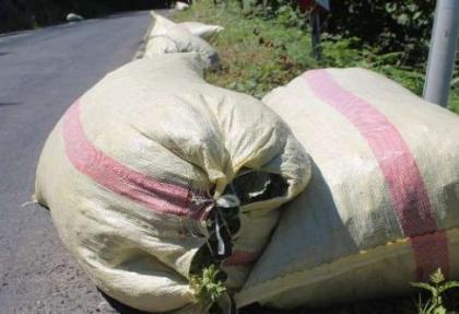 Fındık üreticisine aflatoksin uyarısı