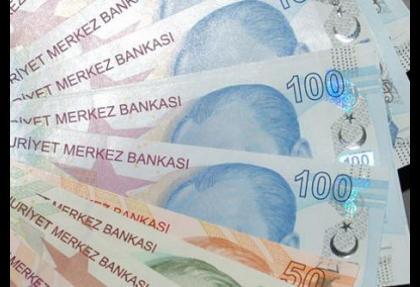 Dolar 2 lira oldu Ayşe Teyzem yandı