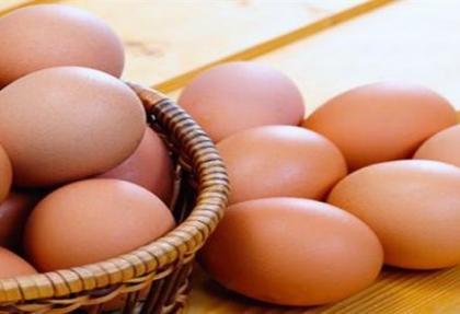 Yumurta ihracatı 173 milyon dolar döviz getirdi