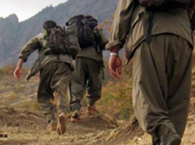 Kaçan kurtuluyor.. 10 PKK'lı daha teslim oldu!