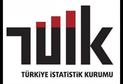 TÜİK'in enflasyon anketinde