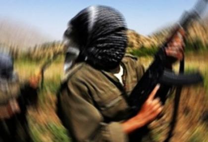 Bingöl'de 1 terörist yakalandı