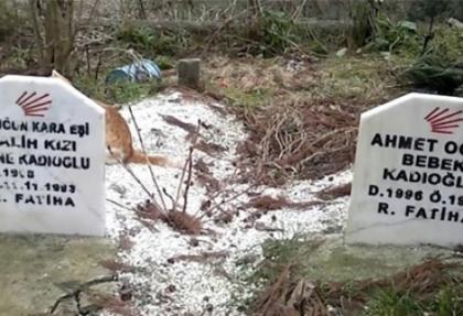 Mezar taşlarına CHP mührü