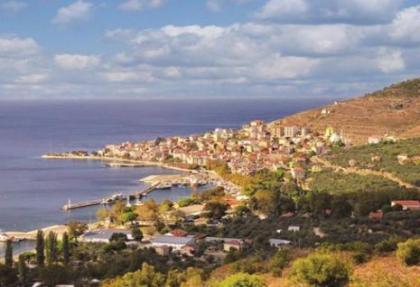 Marmara Adası'nı 41 ocak kemiriyor