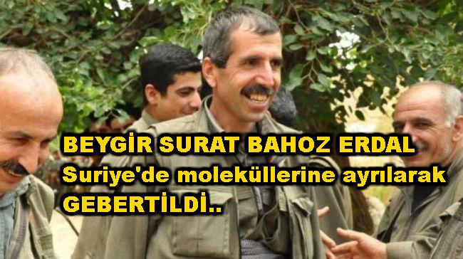bahoz_erdal_kimdir